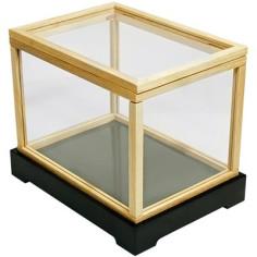 Illusion money box (With...