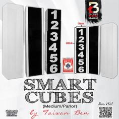 Smart Cubes - Medium